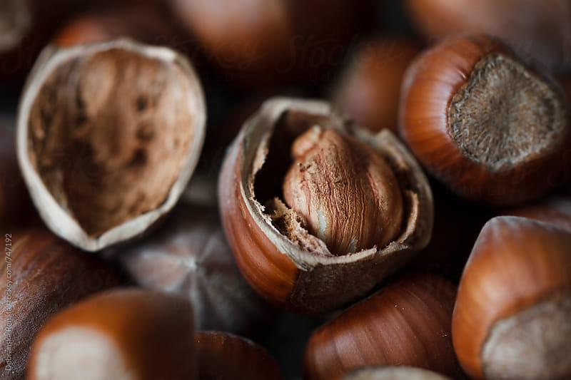 Hazelnuts (close-up) by Dobránska Renáta for Stocksy United