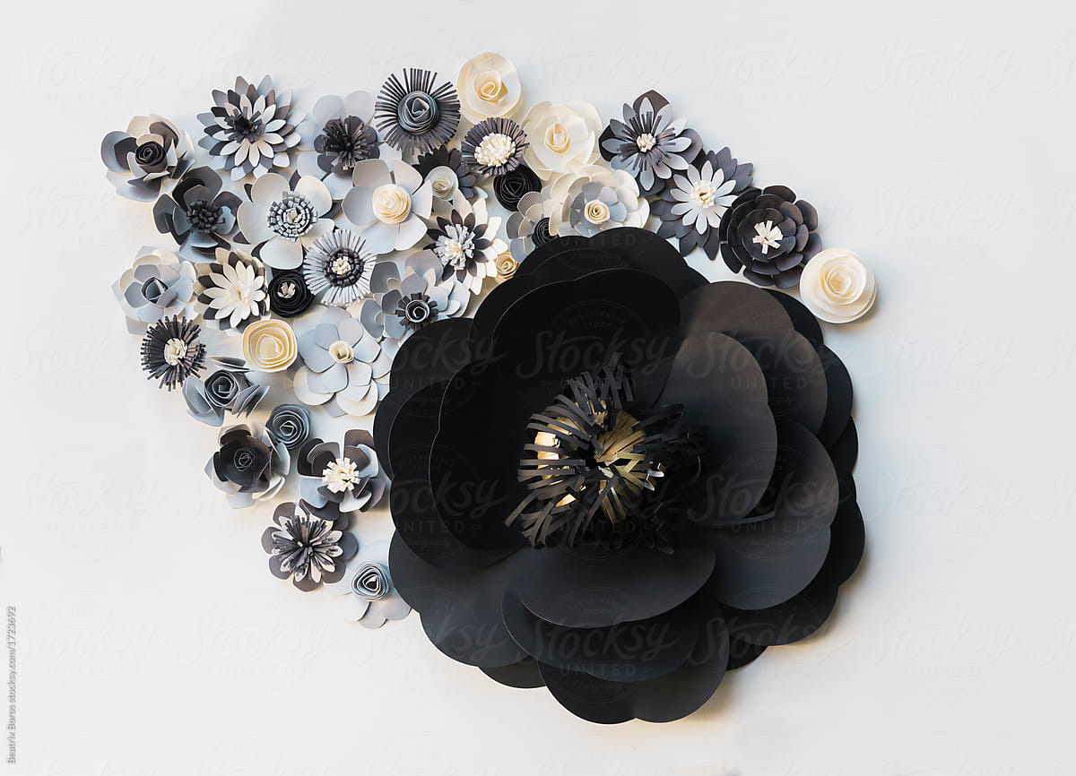 Big Black Flower With Smaller Paper Flowers On White Wall Stocksy