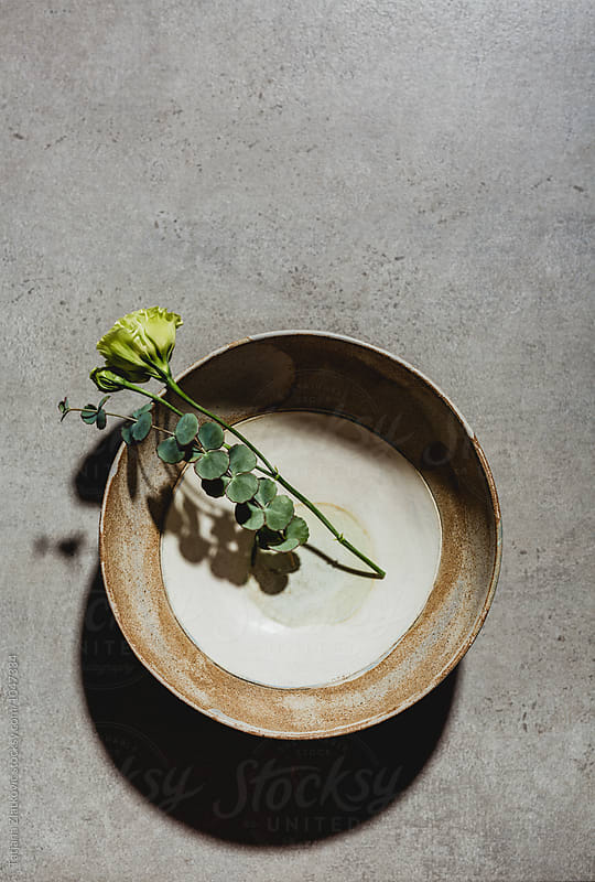 Artistic ceramic bowl with flower and eucalyptus by Tatjana Ristanic for Stocksy United