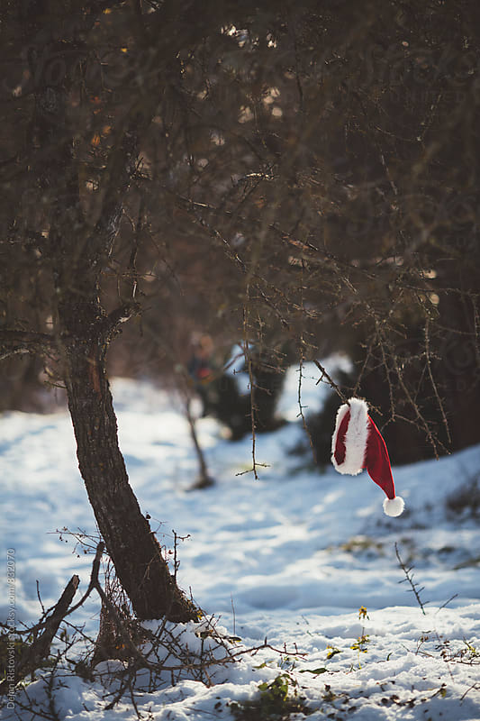Santa has lost his hat. by Dejan Ristovski for Stocksy United