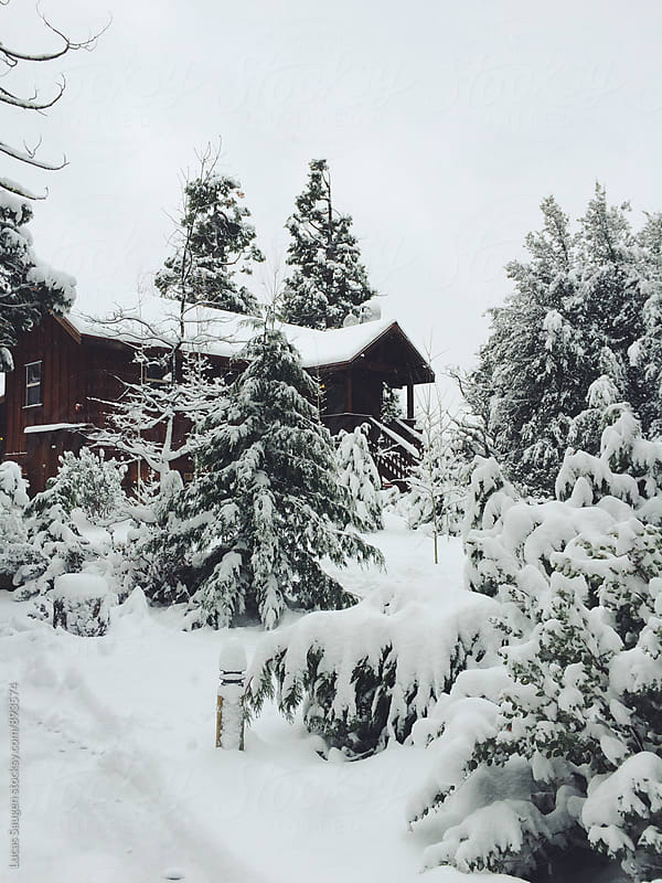 A snowy cabin in the woods. by Lucas Saugen for Stocksy United