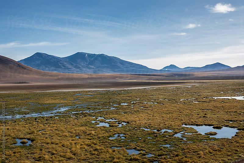 Adventure in Atacama desert, north Chile. by Mauro Grigollo for Stocksy United