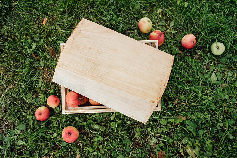 Wooden box with apples on the grass by Boris Jovanovic for Stocksy United