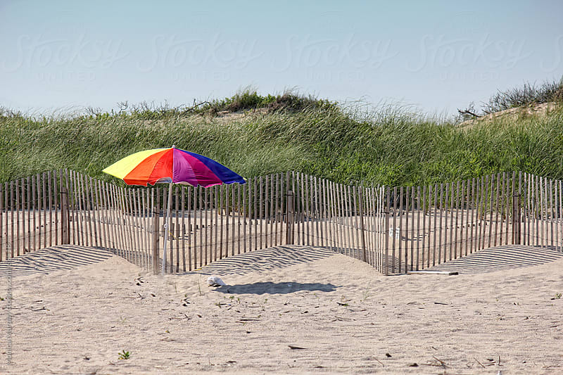 Lone colorful umbrella on the beach near the dunes and fence by Monica Murphy for Stocksy United