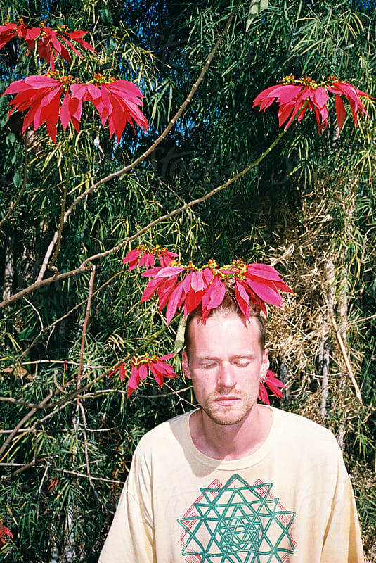 Young man under exotic flower tree by Dina Lun for Stocksy United