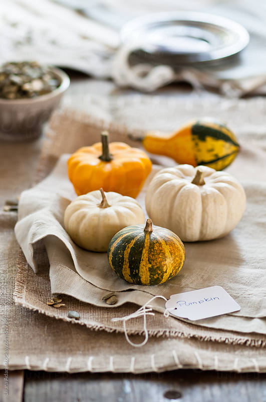 some small pumpkins placed on napkins by Laura Adani for Stocksy United