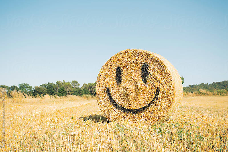 Smile face in a bale of straw by CACTUS Blai Baules for Stocksy United