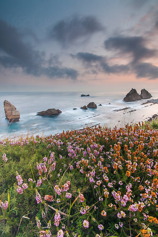 Spring on the coast of northern Spain by Marilar Irastorza for Stocksy United