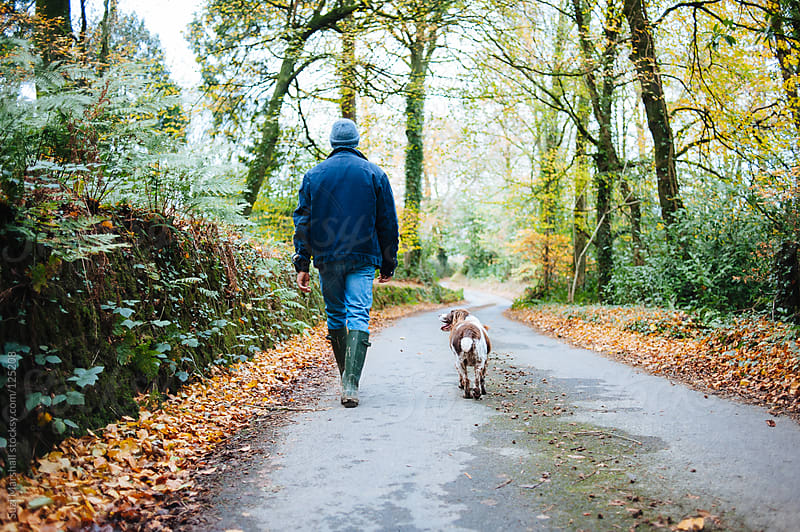 Man and his dog walking along a country lane surrounded by trees by Suzi Marshall for Stocksy United