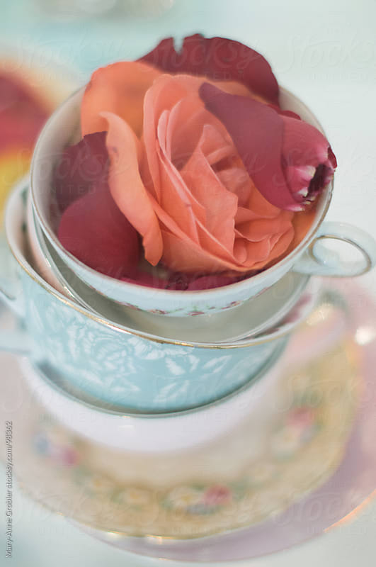 Tea cups by Mary-Anne Grobler for Stocksy United