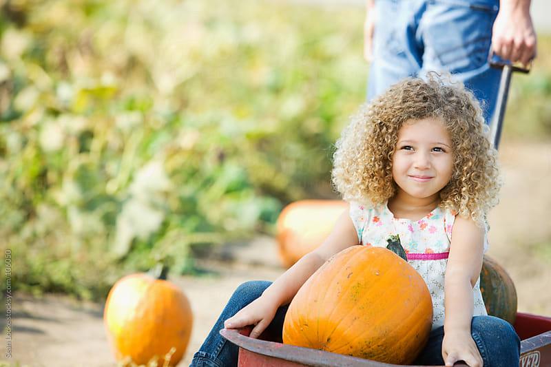 Pumpkins: Dad Pulls Girl With Pumpkins In Wagon by Sean Locke for Stocksy United