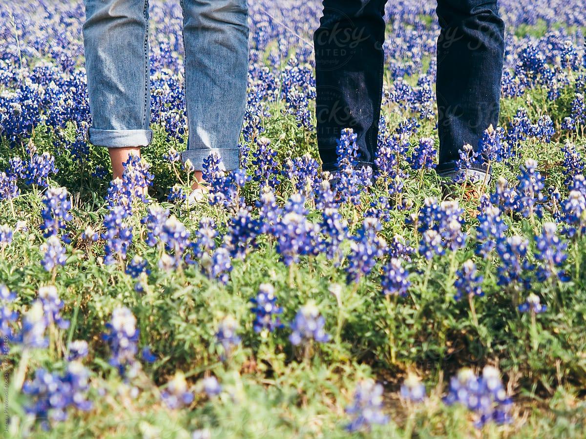 Couple Wearing Jeans Standing In Field Of Bluebonnet Flowers