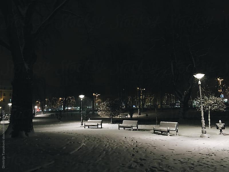 Winter in the city by Dimitrije Tanaskovic for Stocksy United