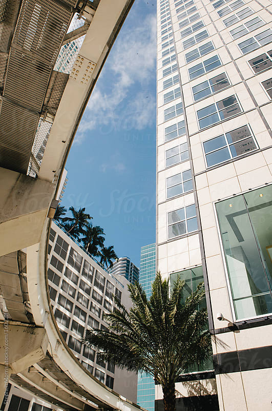 Miami Architecture by Stephen Morris for Stocksy United