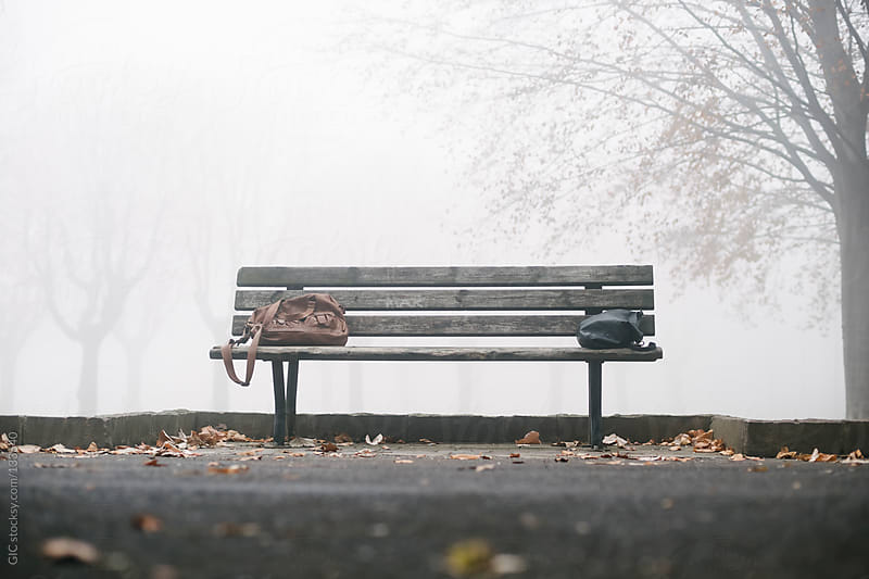 Empty bench in the park by GIC for Stocksy United