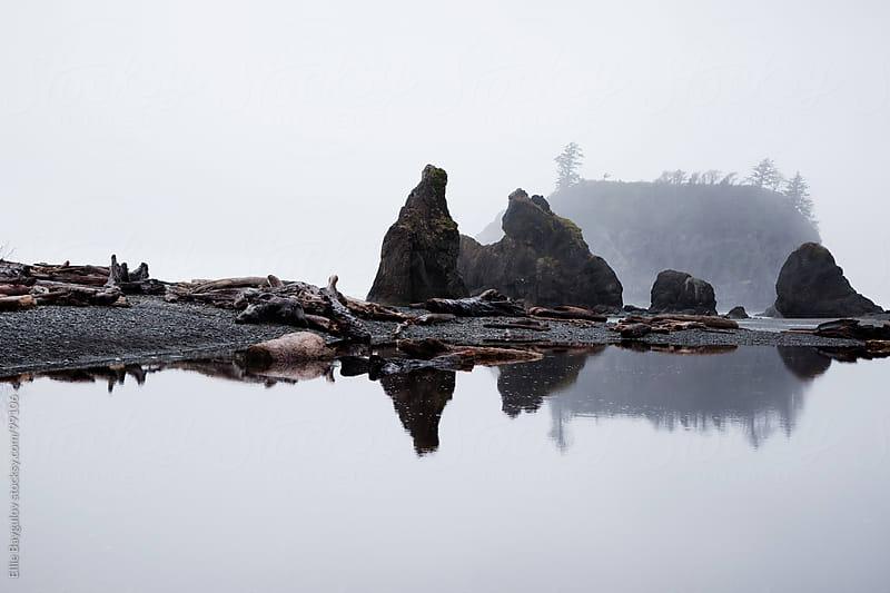 Washington Coast by Ellie Baygulov for Stocksy United