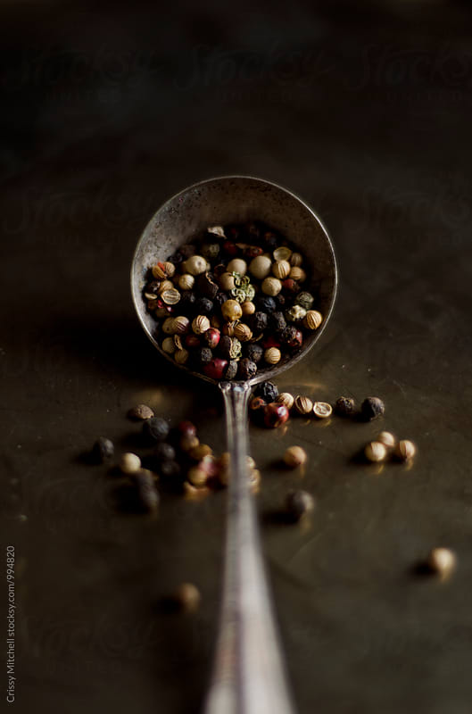 peppercorn by Crissy Mitchell for Stocksy United
