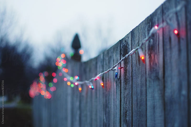 Twinkle lights hanging from a fence by Chelsea Victoria for Stocksy United