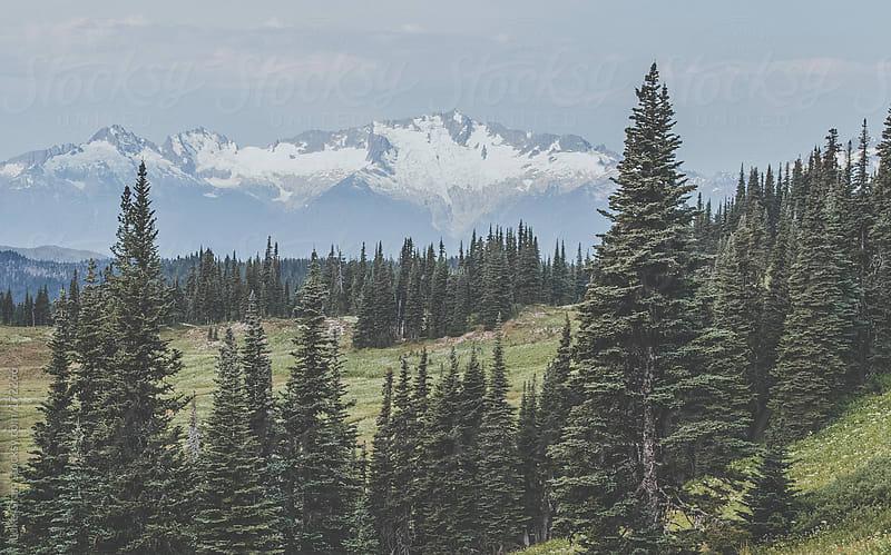 Garibaldi Provincial Park by Luke Gram for Stocksy United