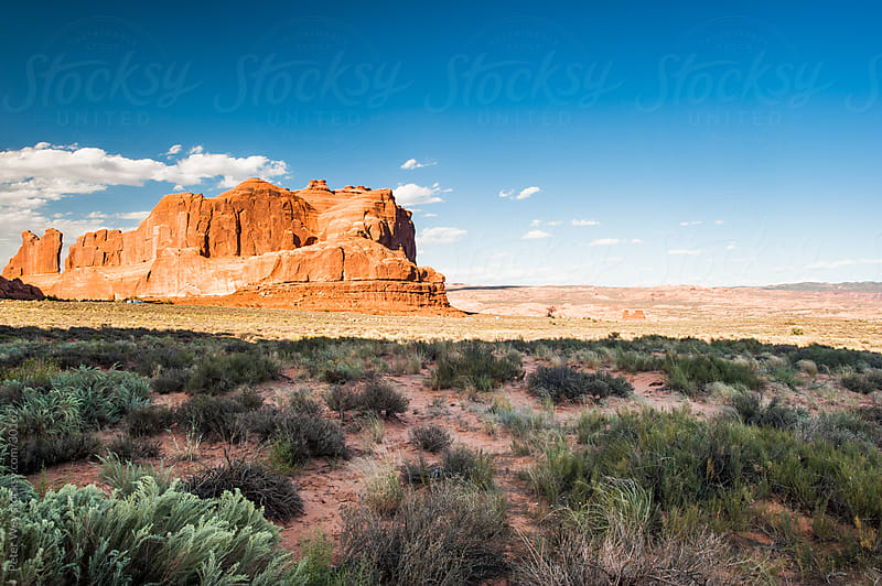 Arches National Park, Moab by Peter Wey for Stocksy United