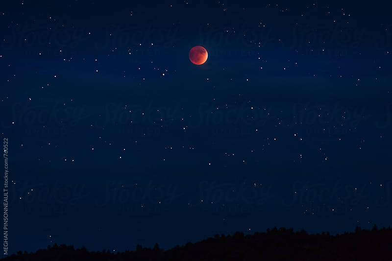 Starry Night and Blood Moon Eclipse by MEGHAN PINSONNEAULT for Stocksy United