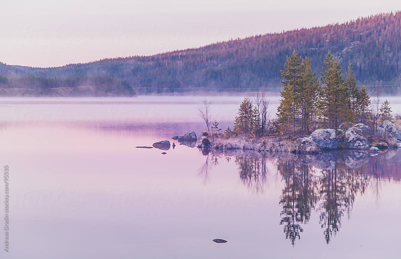 morning mist over a calm lake by Andreas Gradin for Stocksy United