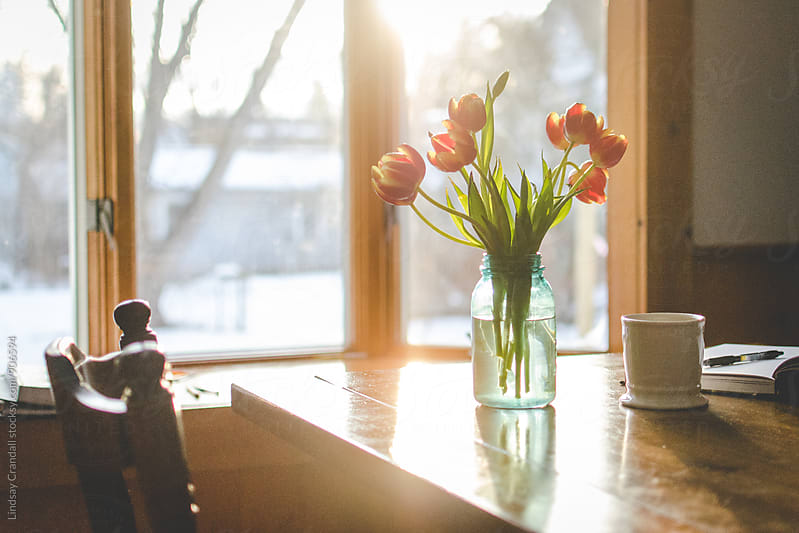 Tulips, coffee mug, and notebook on a table in a sunny, bright room by Lindsay Crandall for Stocksy United