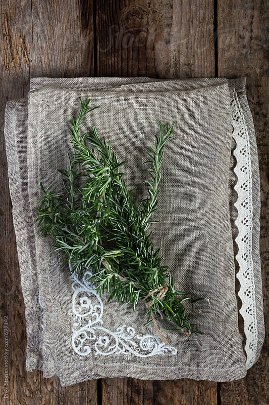 Fresh rosemary sprigs  by Pixel Stories for Stocksy United
