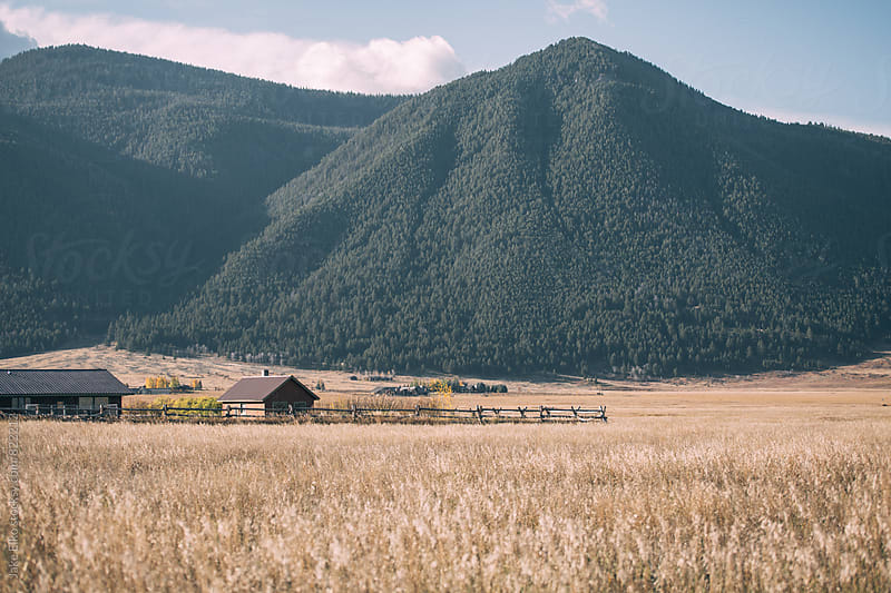 Sleepless Nights in Wyoming by Jake Elko for Stocksy United