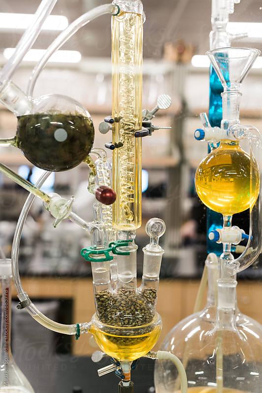 Beer brewing chemistry process display by Matthew Spaulding for Stocksy United
