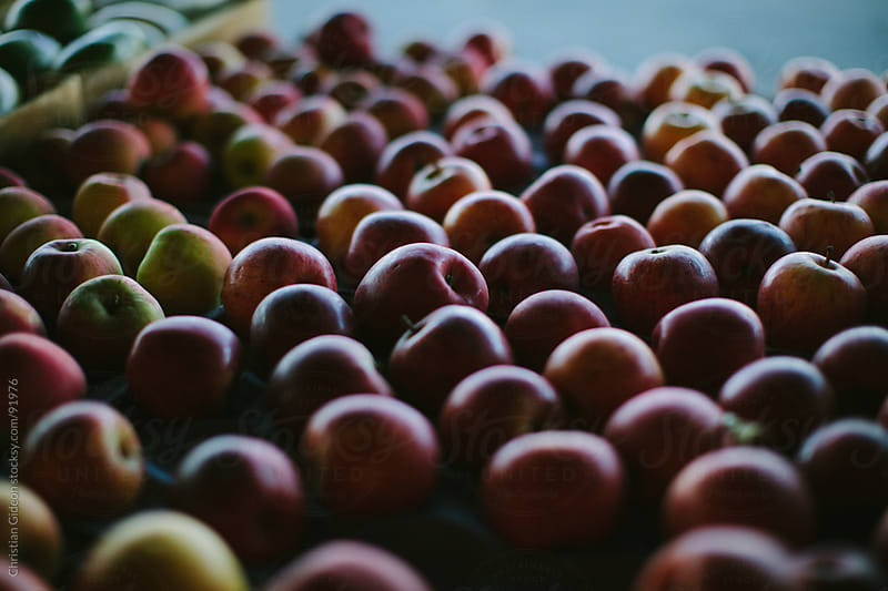 Apples at Farmer's Market by Christian Gideon for Stocksy United
