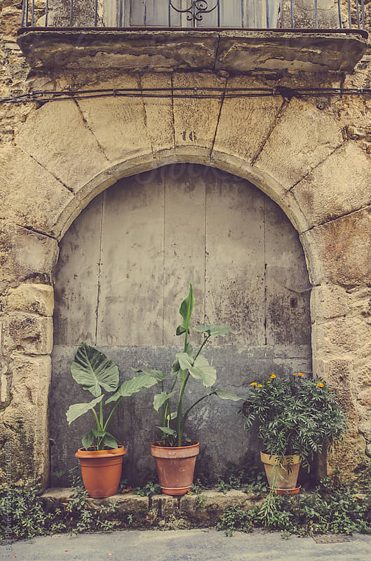 Plants by the door on the street by Eva Plevier for Stocksy United