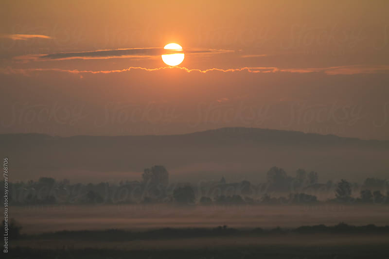 Sunrise in the fog by Babett Lupaneszku for Stocksy United