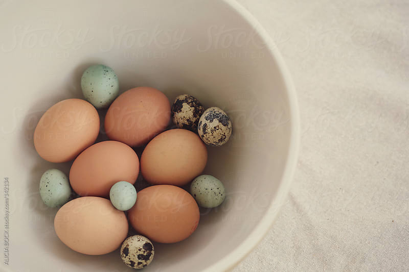 Eggs In A Bowl by ALICIA BOCK for Stocksy United