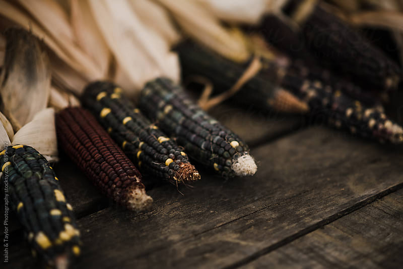 Colorful Raw Corn by Isaiah & Taylor Photography for Stocksy United