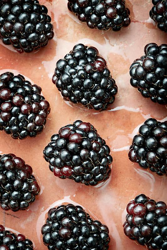 Blackberries by James Ross for Stocksy United