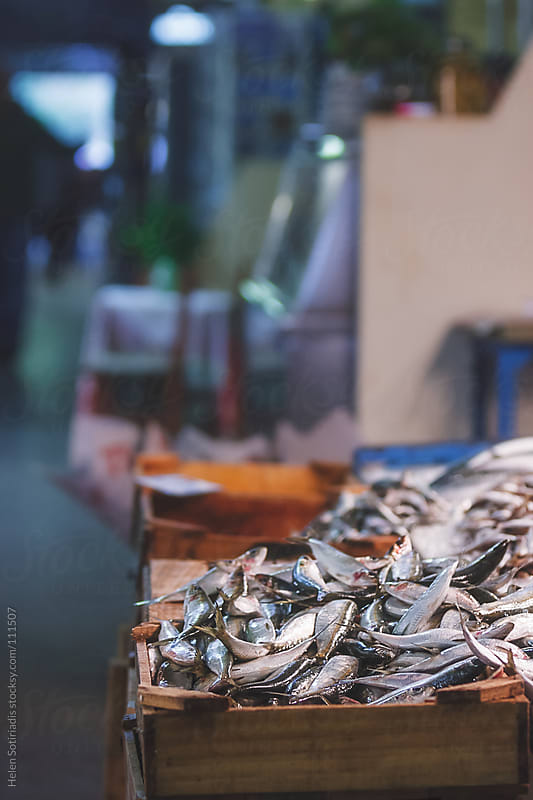 A Traditional Fish Market in Greece by Helen Sotiriadis for Stocksy United