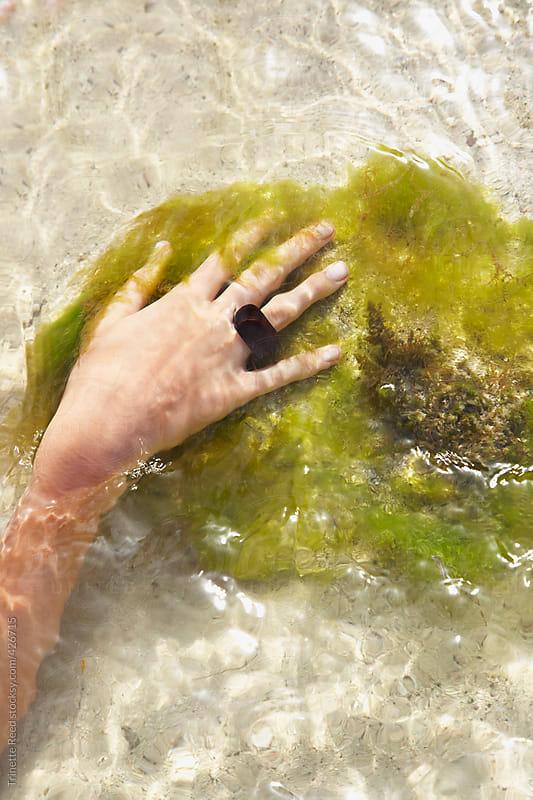 Woman soaking in ocean water by Trinette Reed for Stocksy United