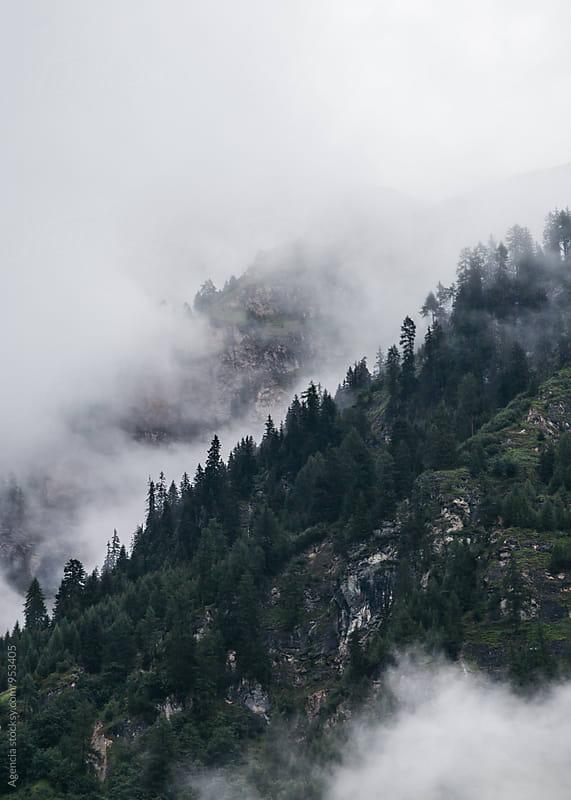 Mountain Fog by Agencia for Stocksy United