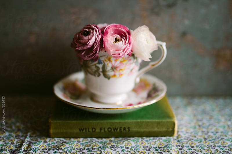 Pink Ranunculus flowers in a vintage teacup by Helen Rushbrook for Stocksy United