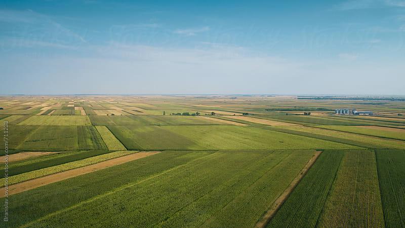 Aerial View of the Countryside Fields by Branislav Jovanović for Stocksy United