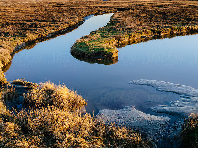 Calm waters in the marsh lands by Photographer Christian B for Stocksy United
