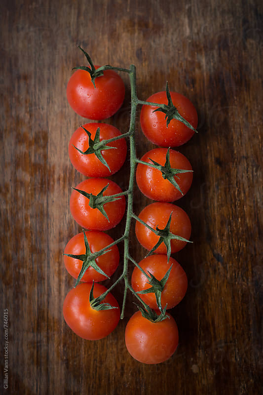 cherry tomatoes on the vine by Gillian Vann for Stocksy United