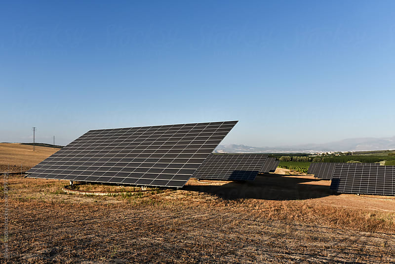 Field of solar panels, Andalusia, Spain by Bisual Studio for Stocksy United