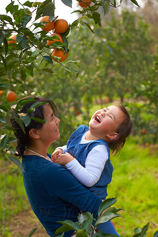little asian girl with her mother in the orange farm by Bo Bo for Stocksy United