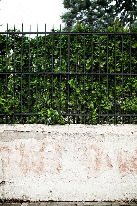 Old Fence by MEM Studio for Stocksy United