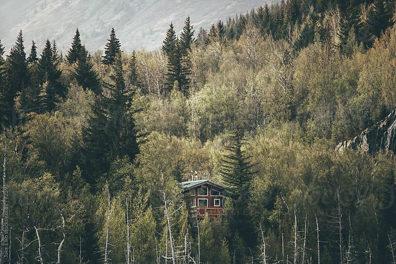 Hidden Cabin by Jake Elko for Stocksy United