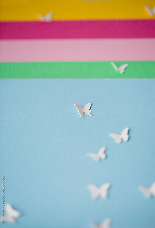 White butterflies on blue background and stripes by Beatrix Boros for Stocksy United
