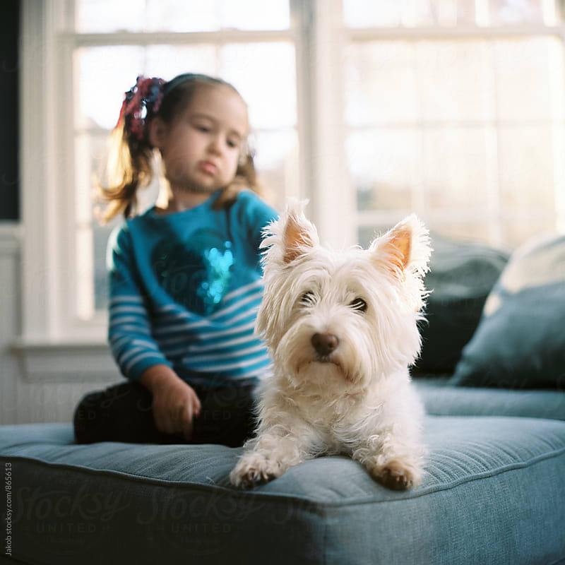 Beautiful young girl sitting on a chair with a cute white dog by Jakob for Stocksy United