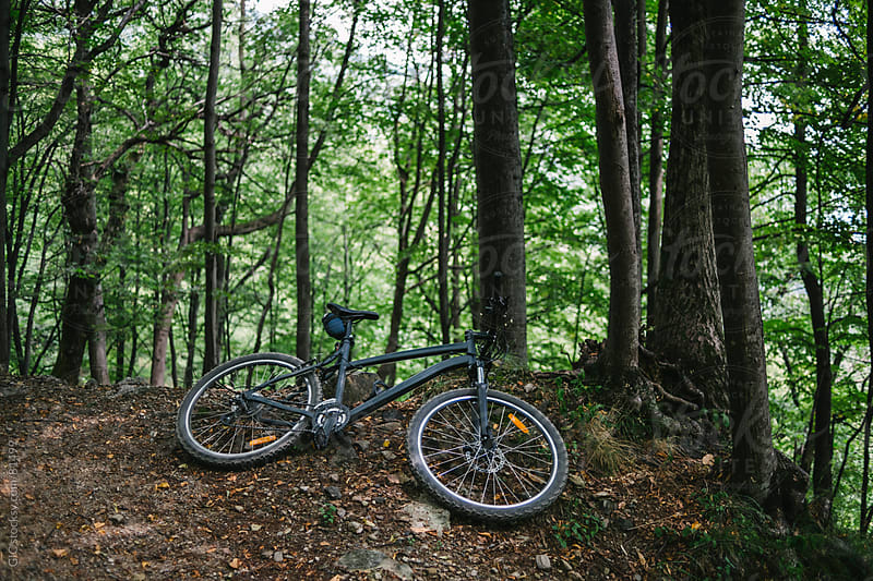 Mountain bike in the forest by GIC for Stocksy United